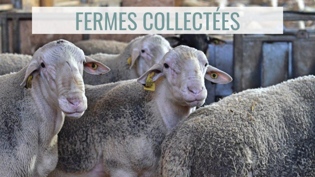 fermes collectées
